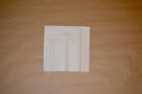 Fold in half widthwise.